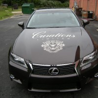 curationscar_hood