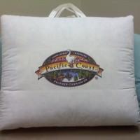 pcfc-logo-on-cushion