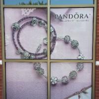 window_perf-pandora